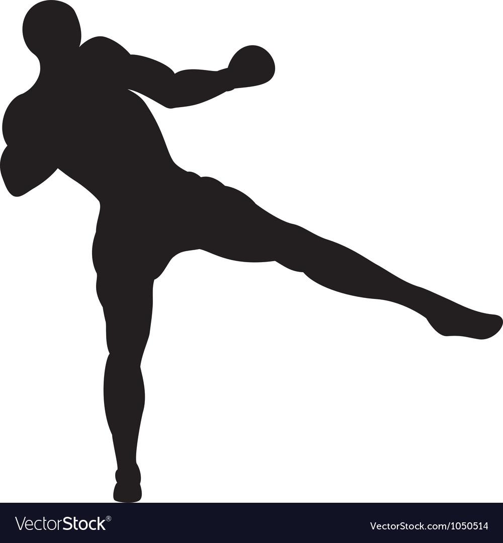 Low thai kick vector image