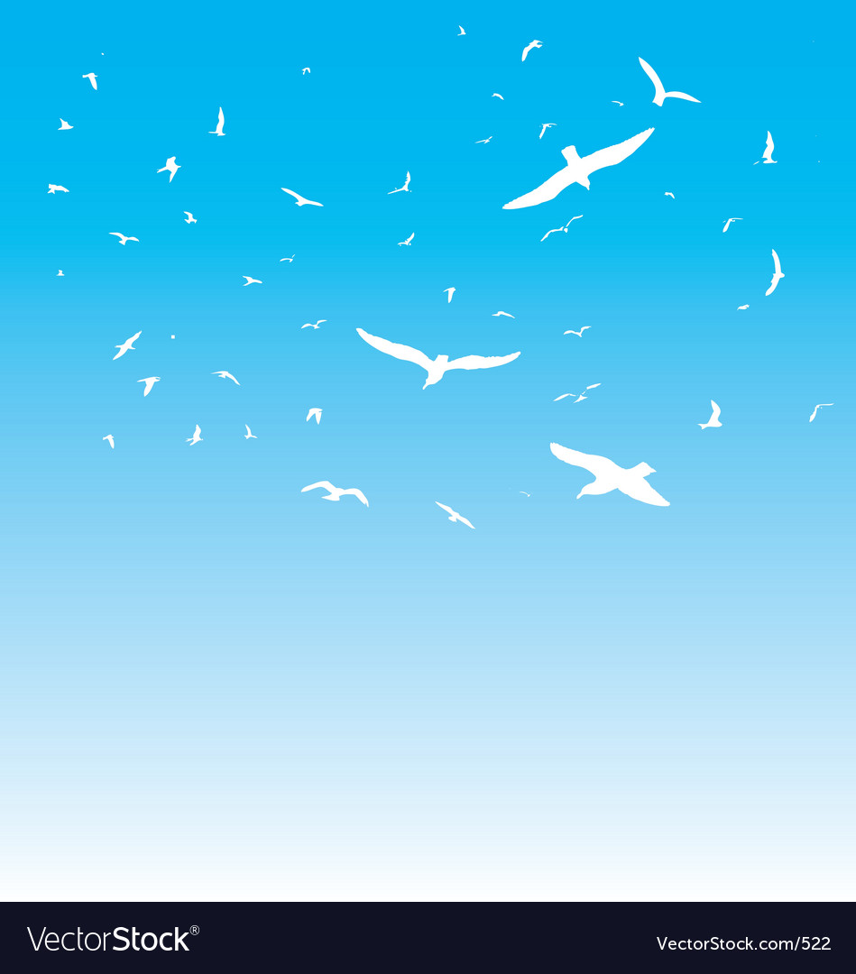 The birds vector image
