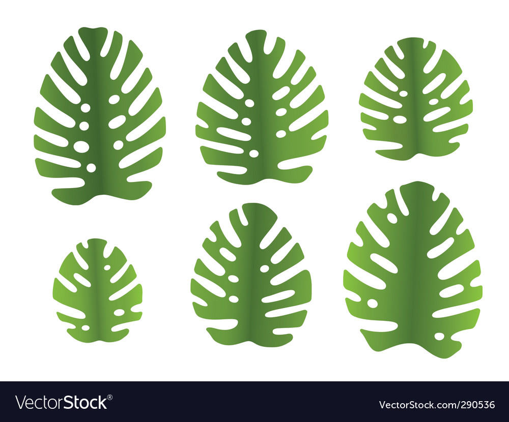Leaf icons vector image
