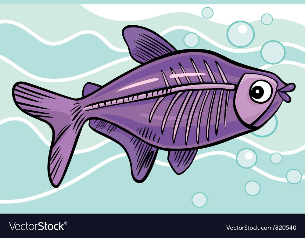 the main characteristics of the ray fish