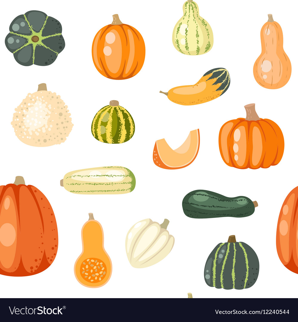Seamless pattern with pumpkins on white vector image
