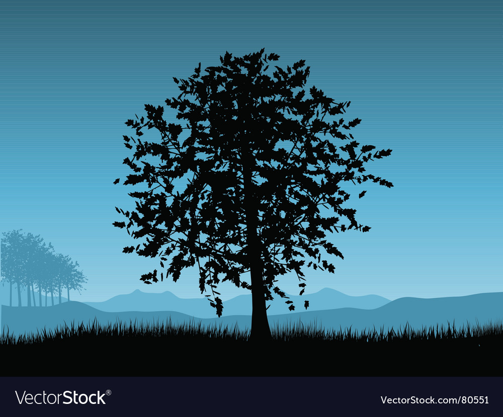 Sunset tree Vector Image