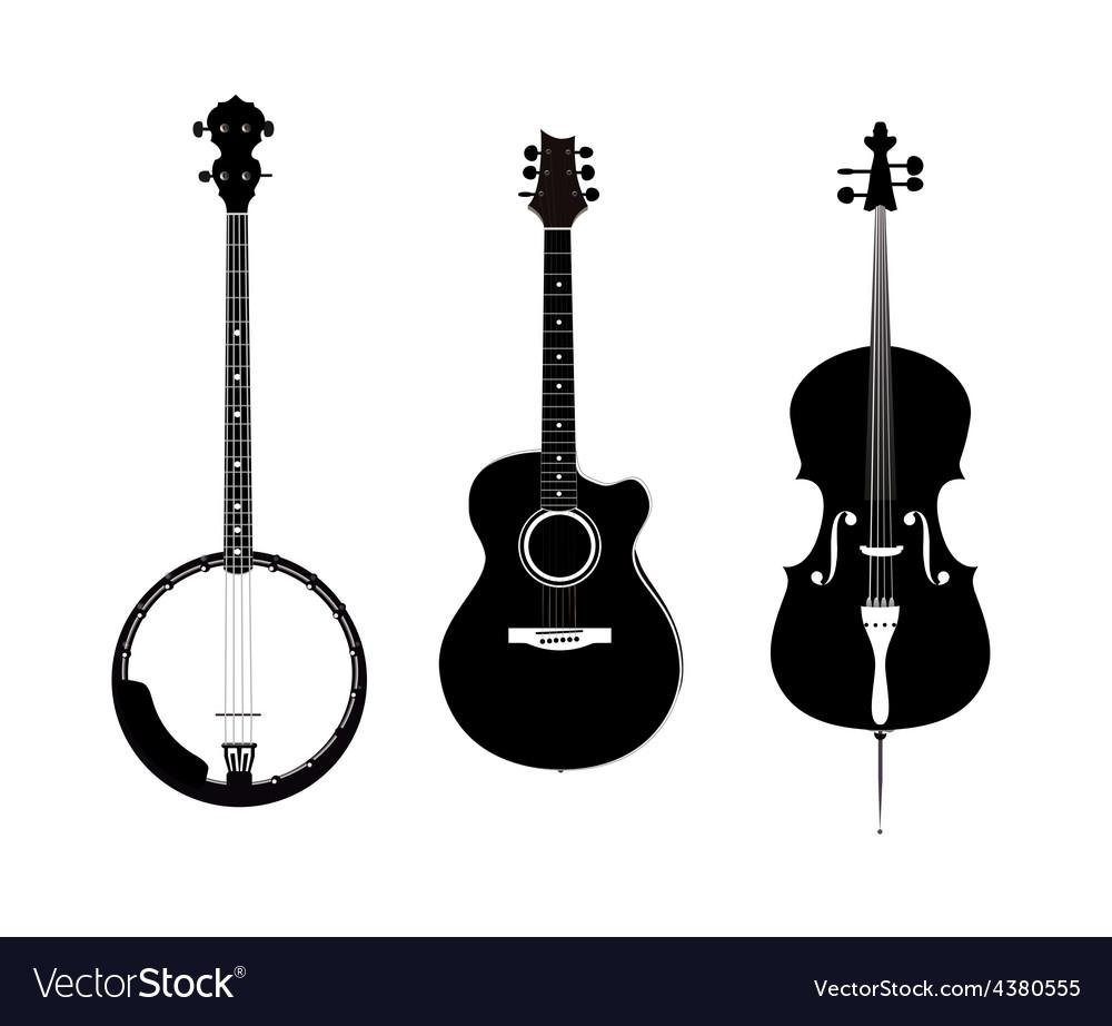 Banjo Acoustic Guitar and Banjo vector image