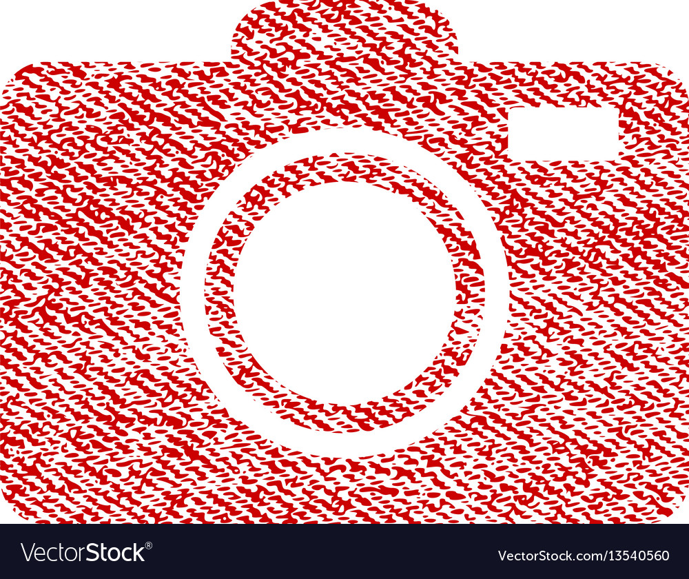 Photo camera fabric textured icon vector image