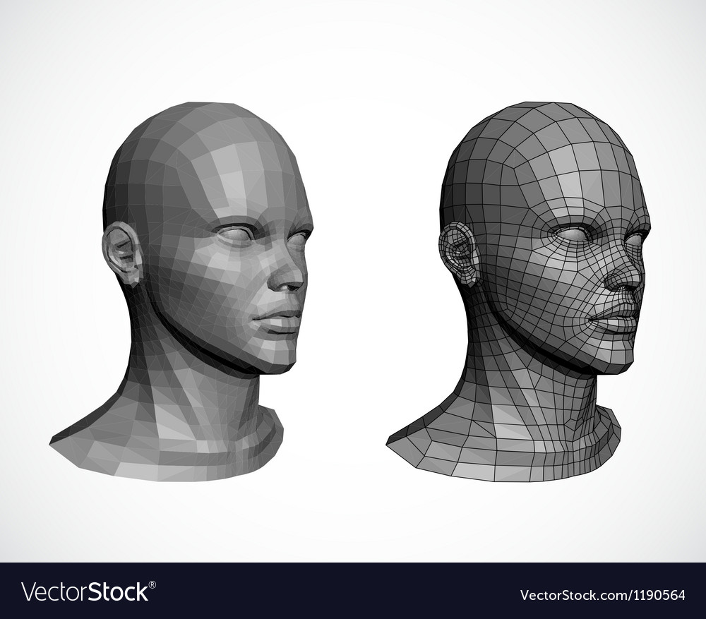 Female heads vector image