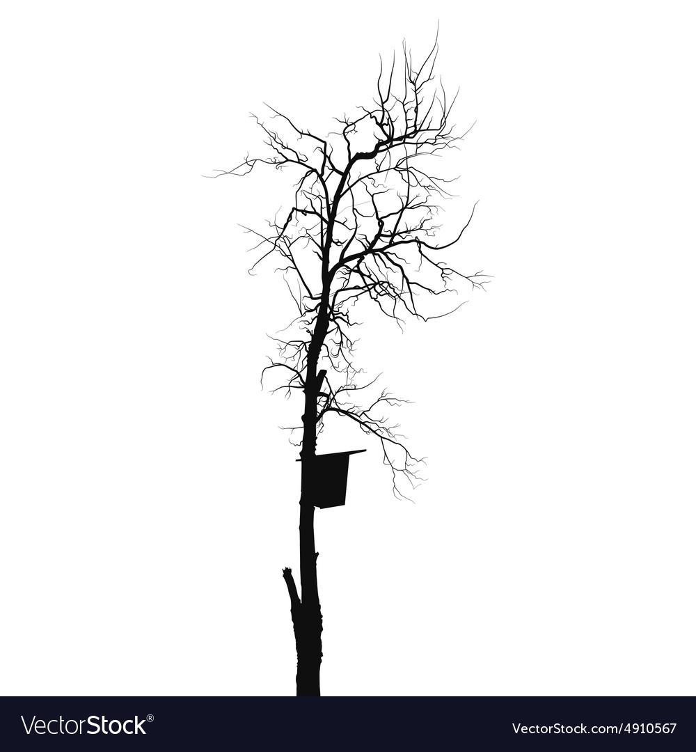 Silhouette old dry tree with starling house vector image