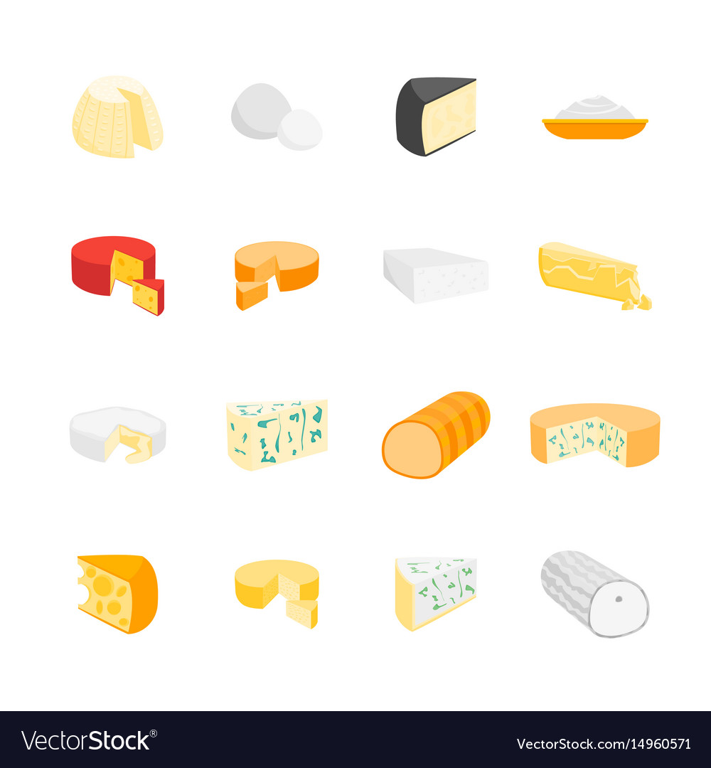 Cheese product dairy set vector image