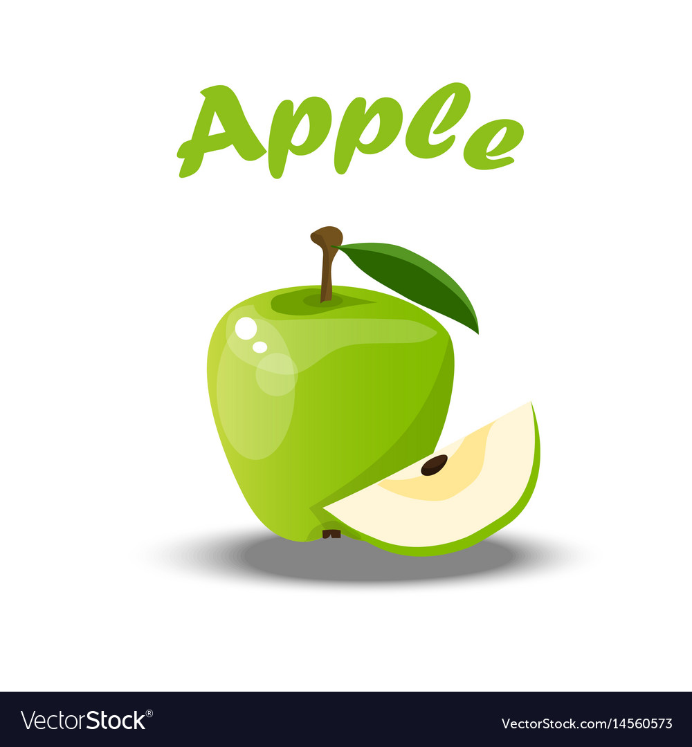 Whole and a cut green apple vector image