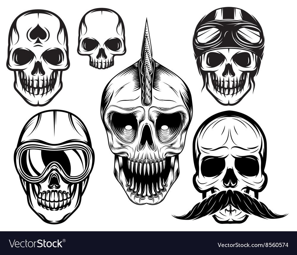 Set of six different skulls for design vector image