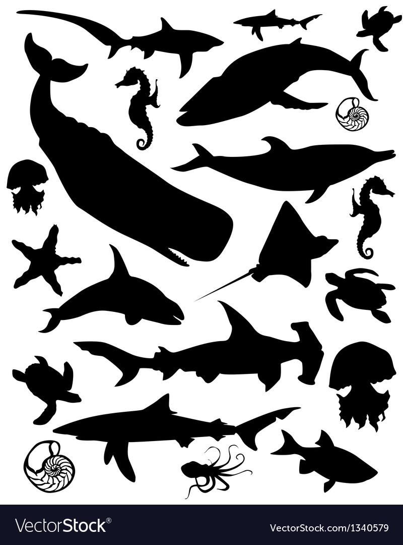Marine animals vector image