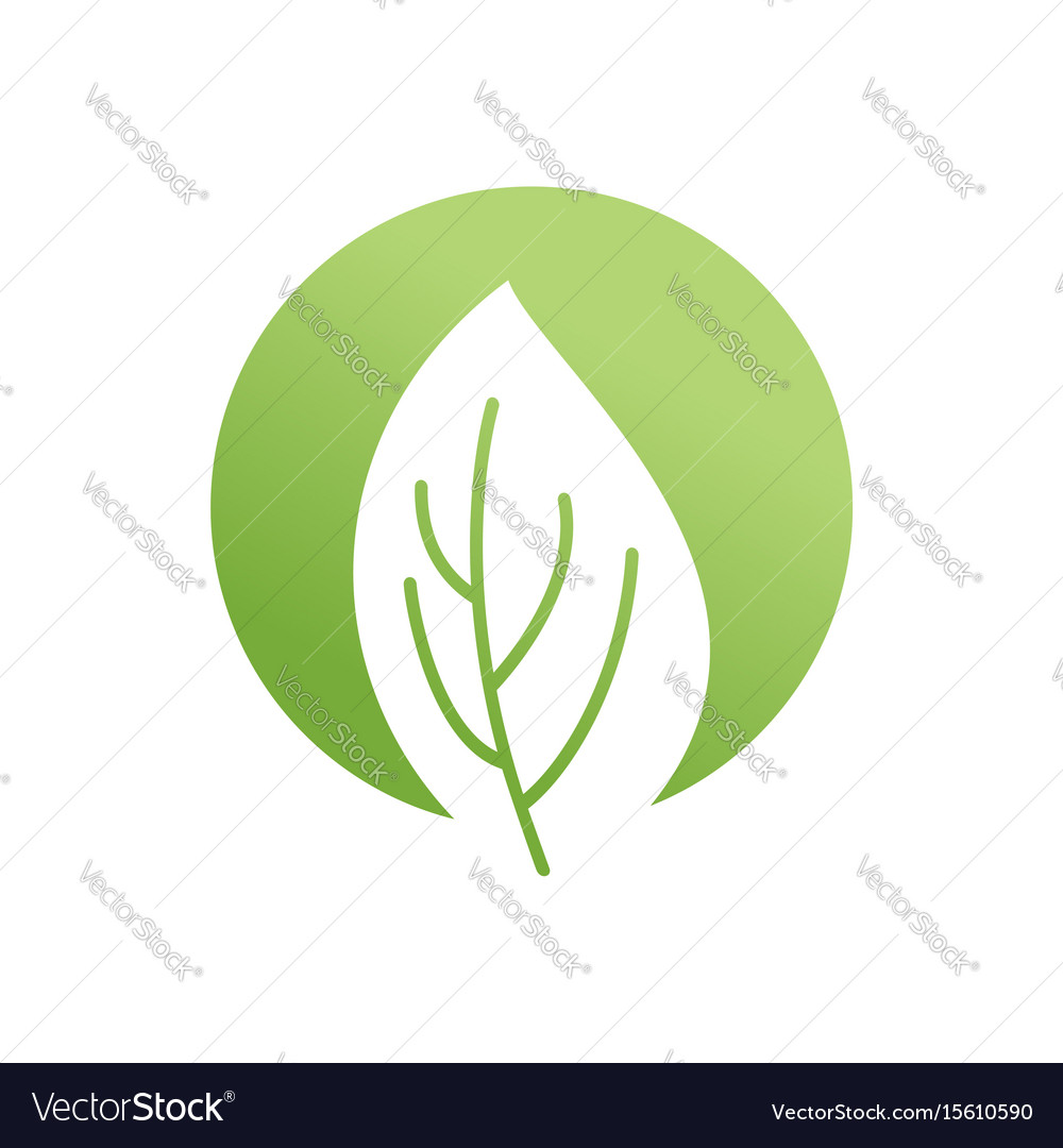 Green leaf emblem eco logo bio sign vector image