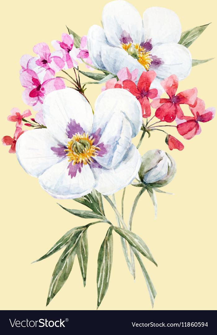 Watercolor floral bouquet Royalty Free Vector Image