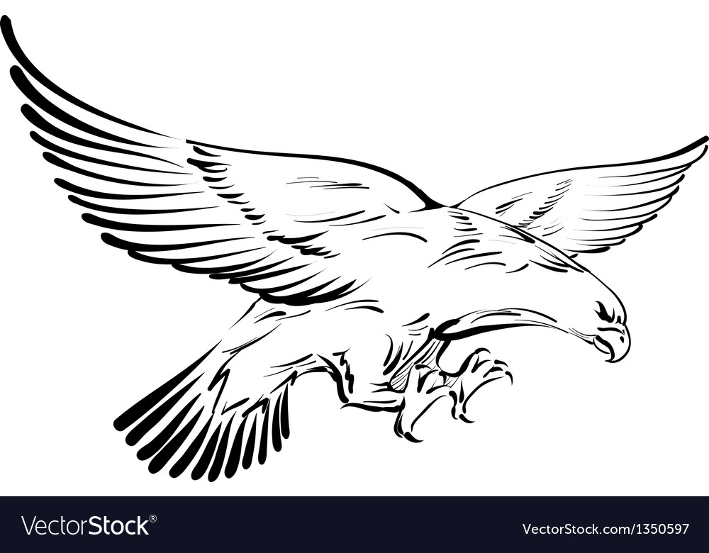 Doodle eagle vector image