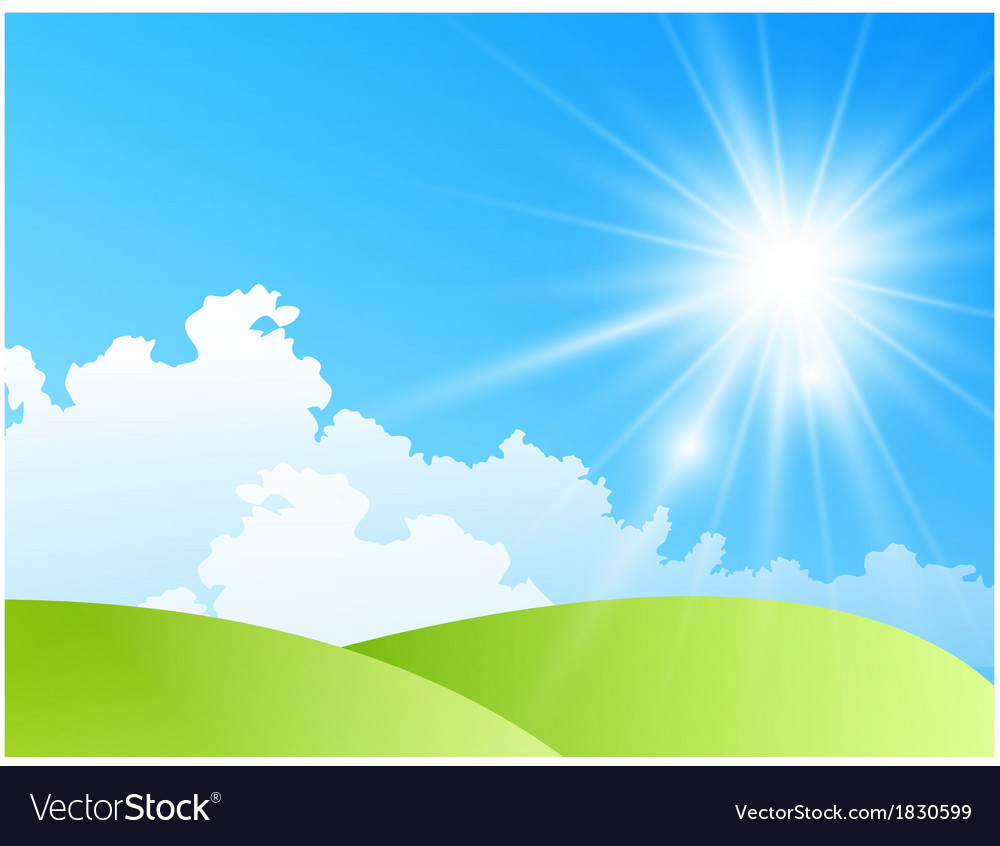 Field of daisies with bright sun vector image