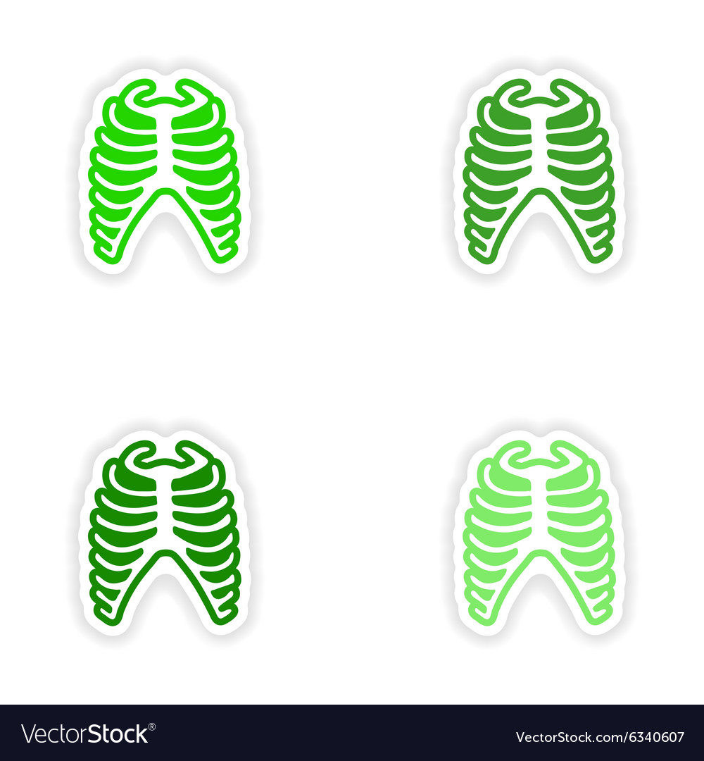Set paper stickers on white background bone ribs