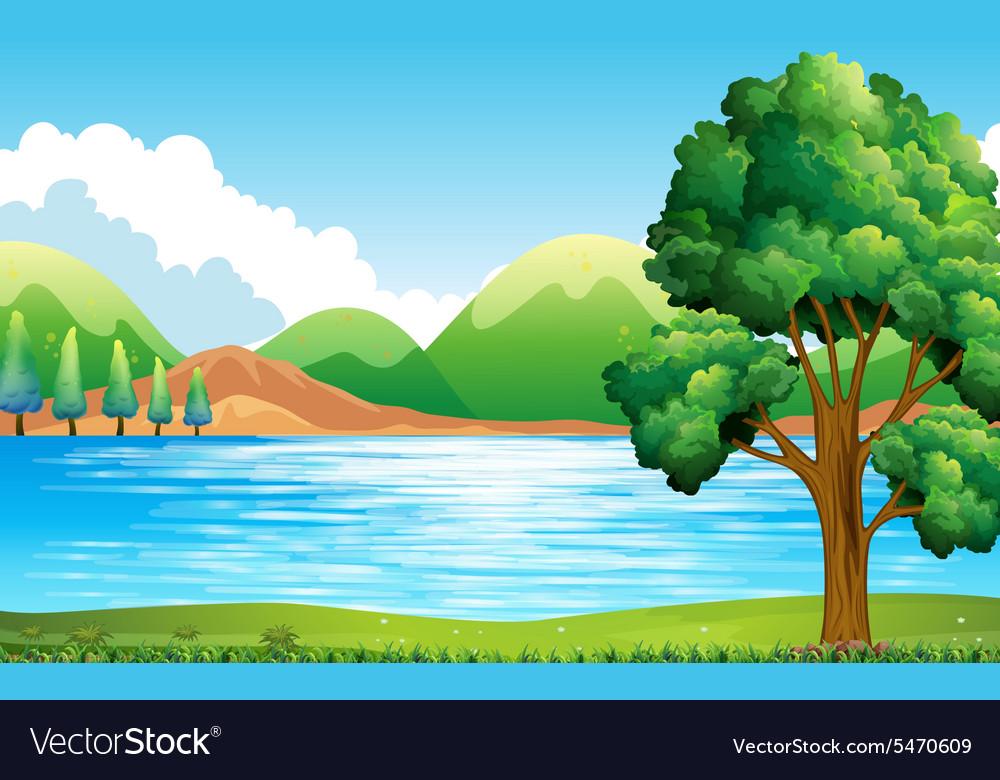 Lake and park vector image