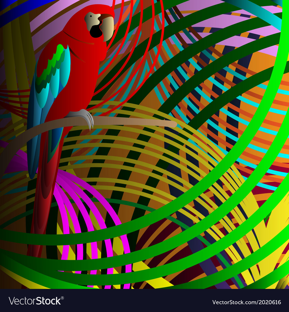 Parrot in jungle vector image