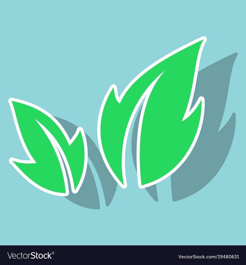fresh green basil leaves icon flat style