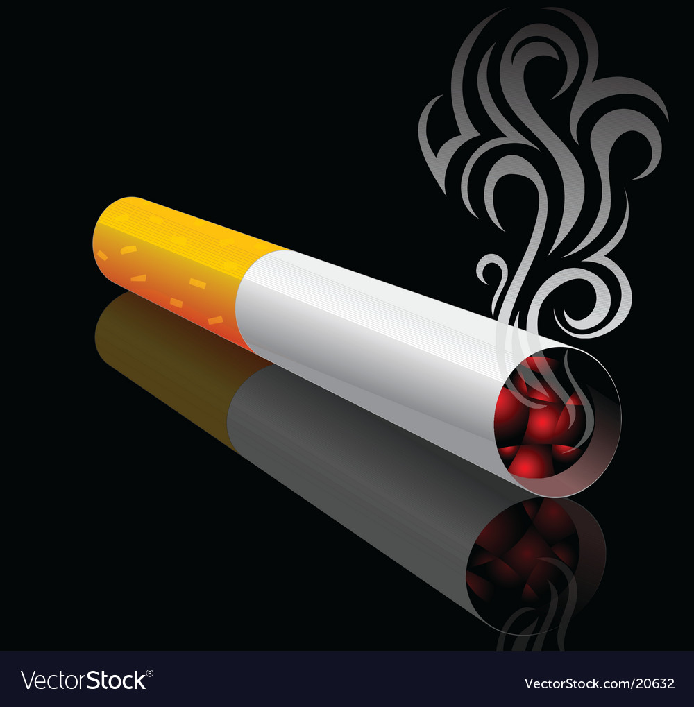 Cigarette design vector image