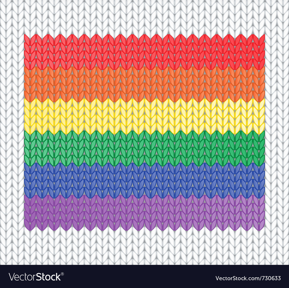 Knitted rainbow flag vector image