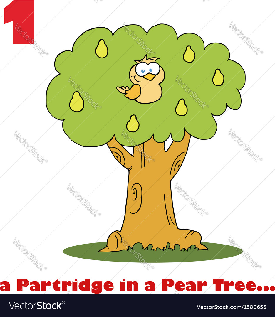 Partridge in a pear tree cartoon vector image