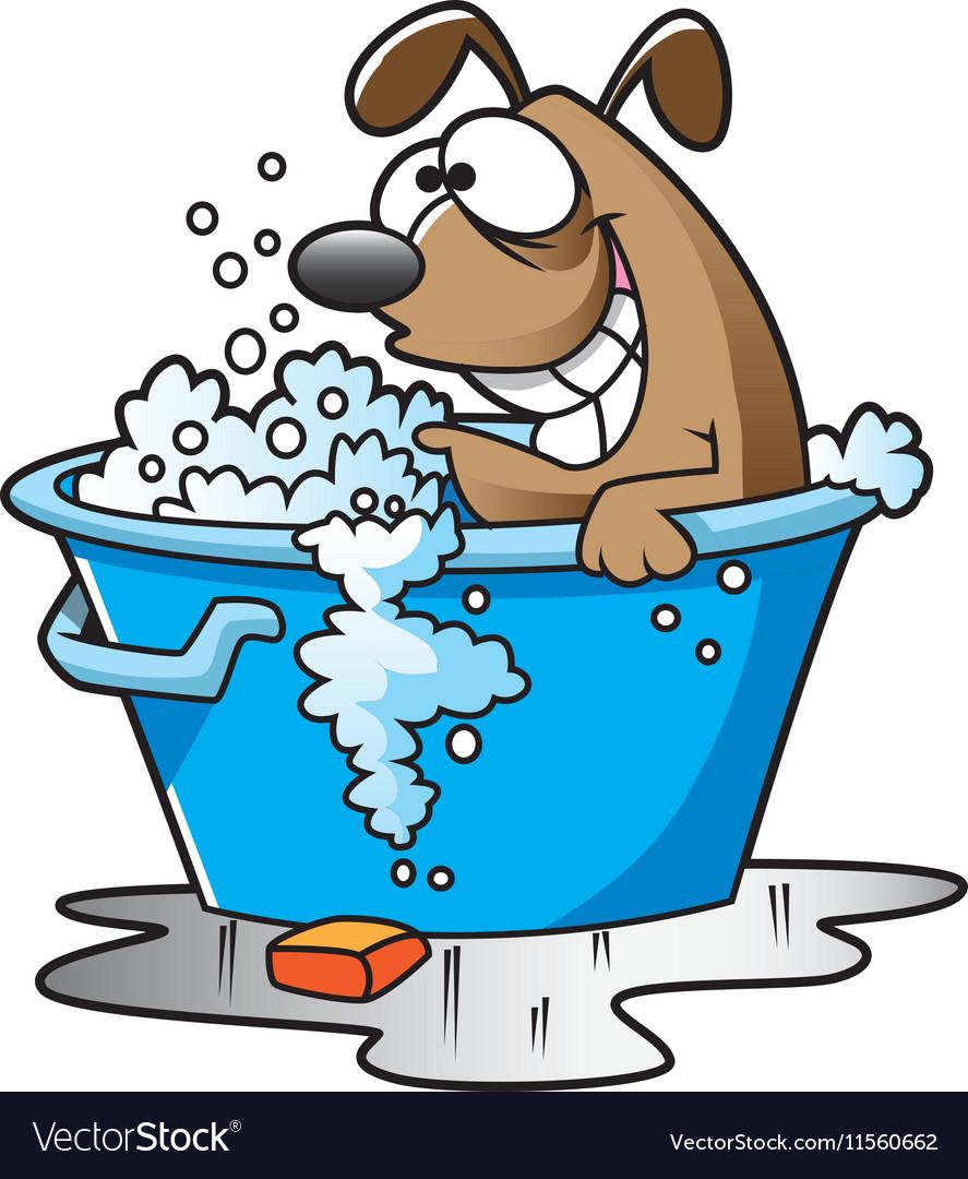 Dogbath vector image
