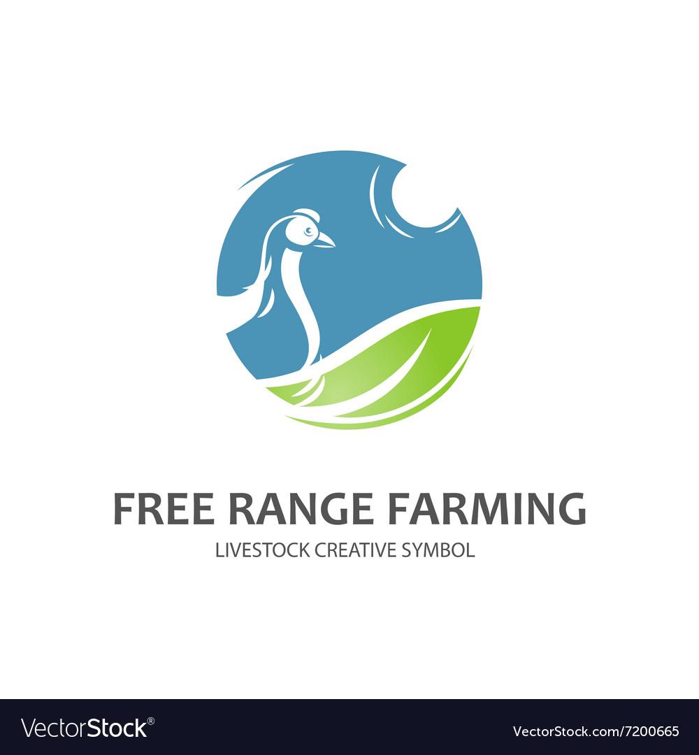 Free range farming symbol vector image