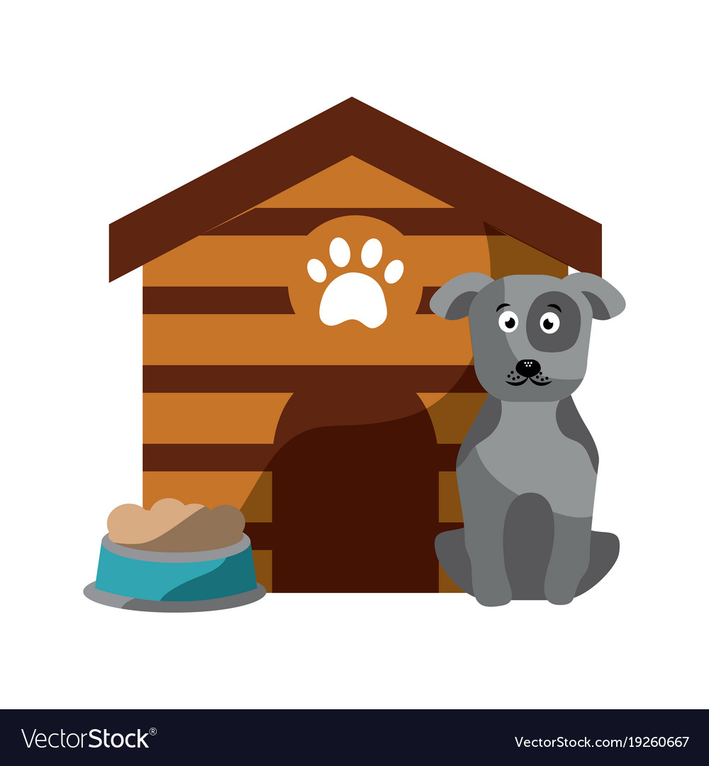 Pet dog sitting with house food vector image