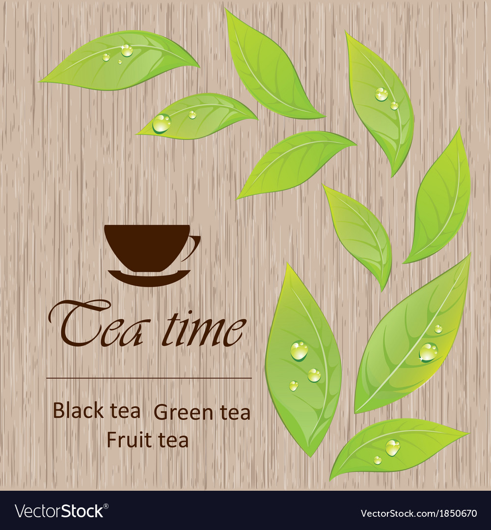 Template of a tea menu vector image