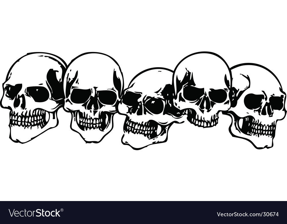 Skulls illustration vector image