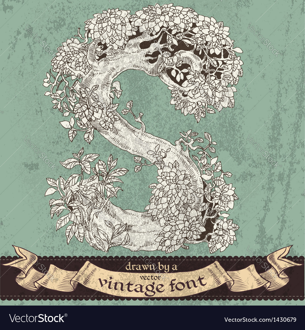 Magic grunge forest hand drawn by vintage font - S vector image