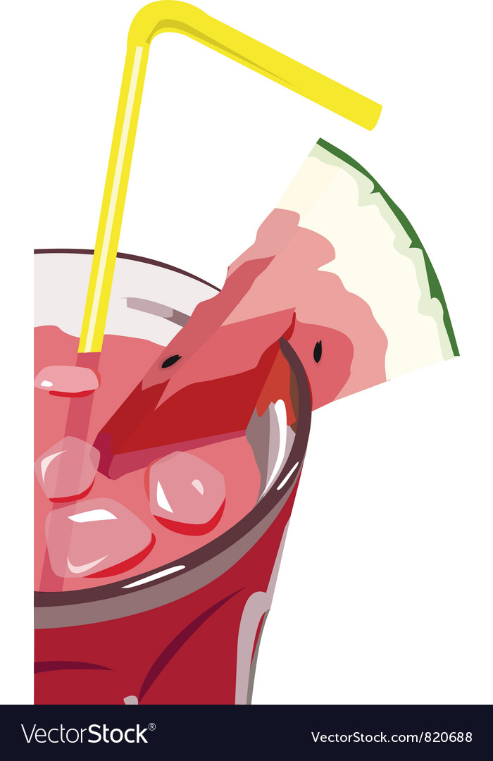 Watermelon cocktail vector image