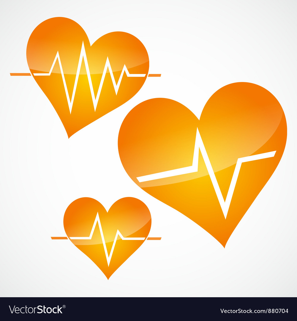 Heart and heartbeat symbols vector image