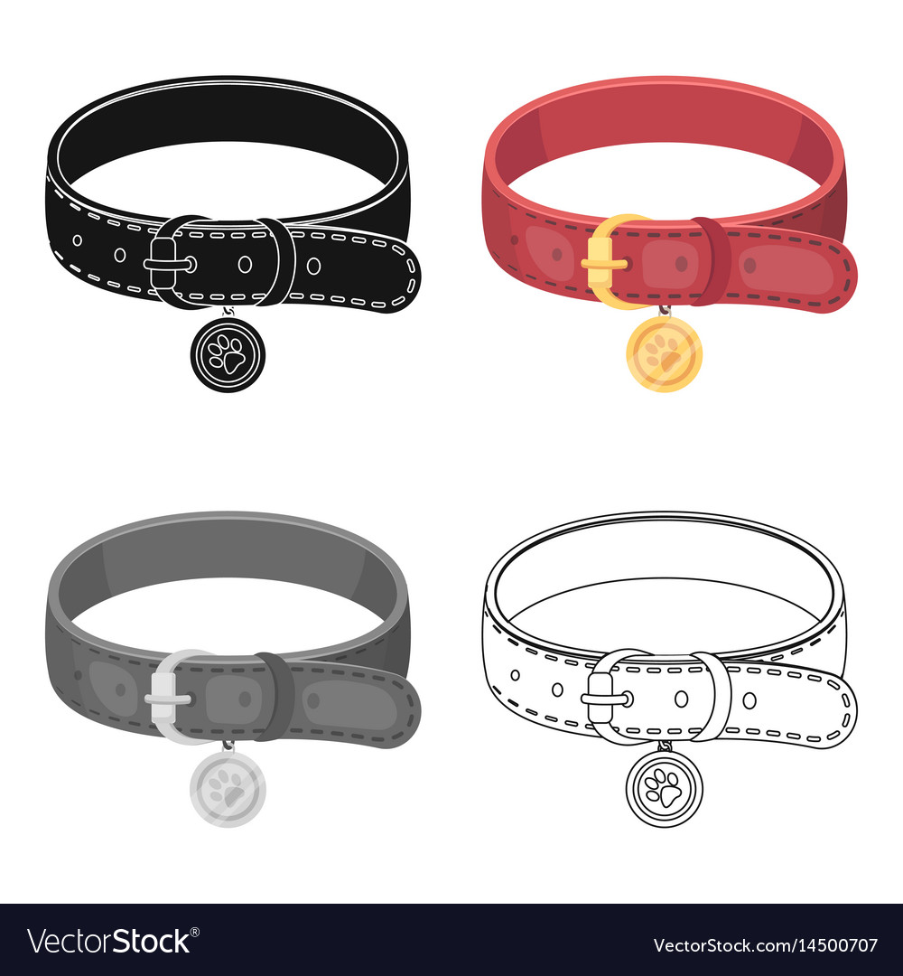 Collar with a medal for an animalpet shop single vector image