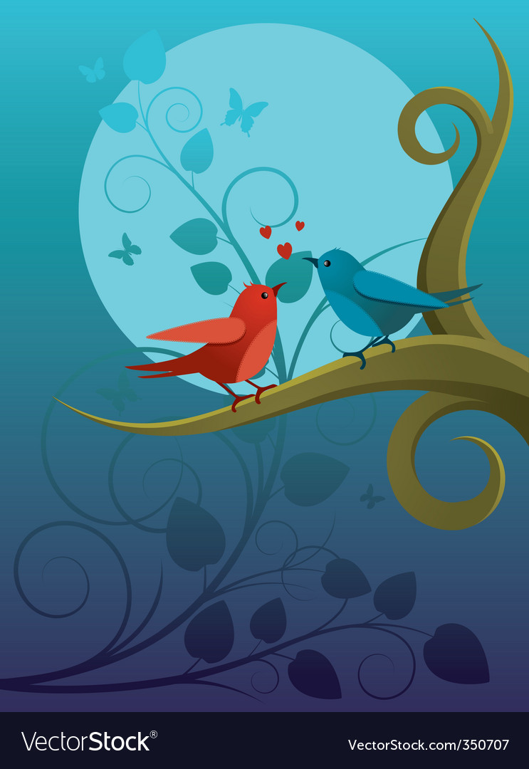 Lovers birdie vector image