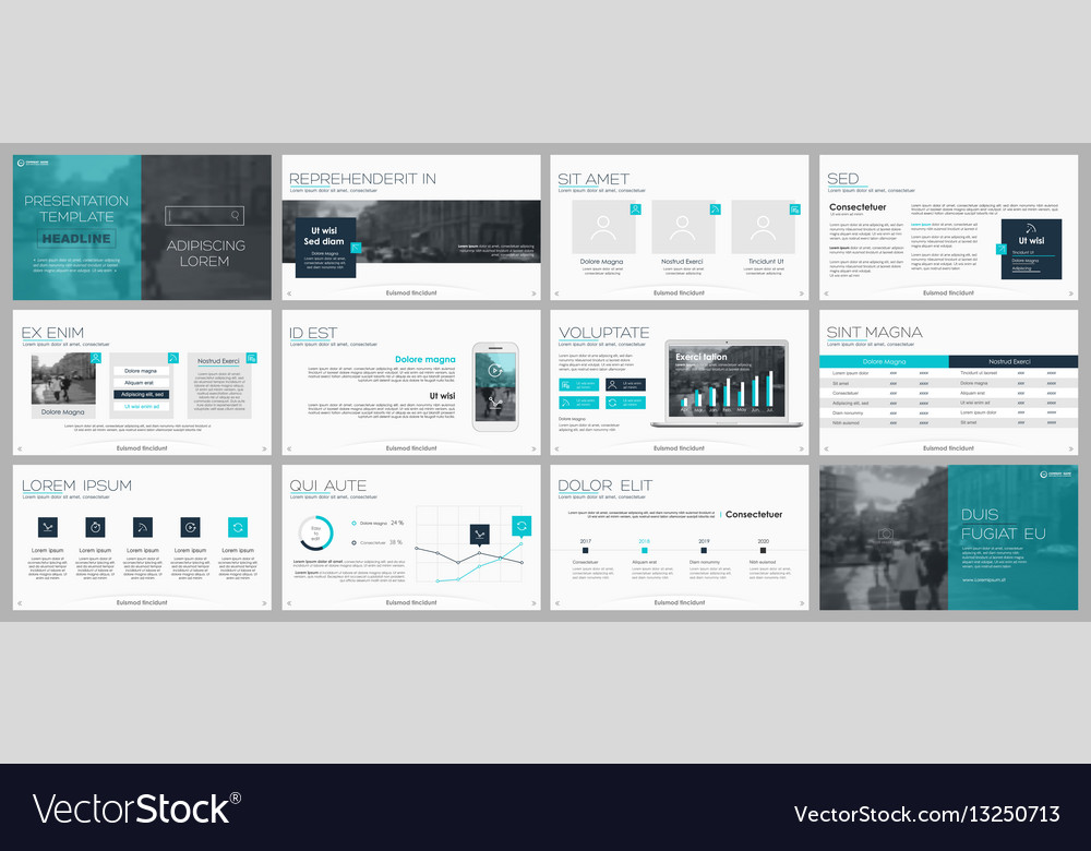Elements for infographics and presentation vector image