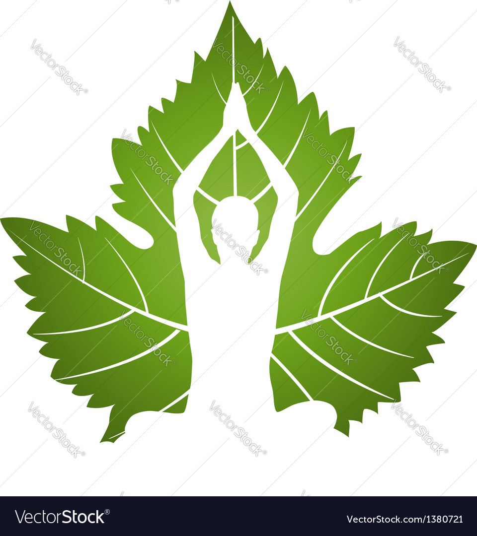 Yoga logo on green leaf vector image