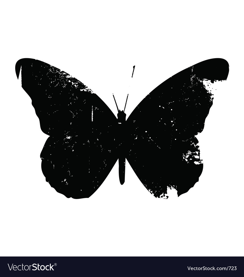 Grunge butterfly vector image