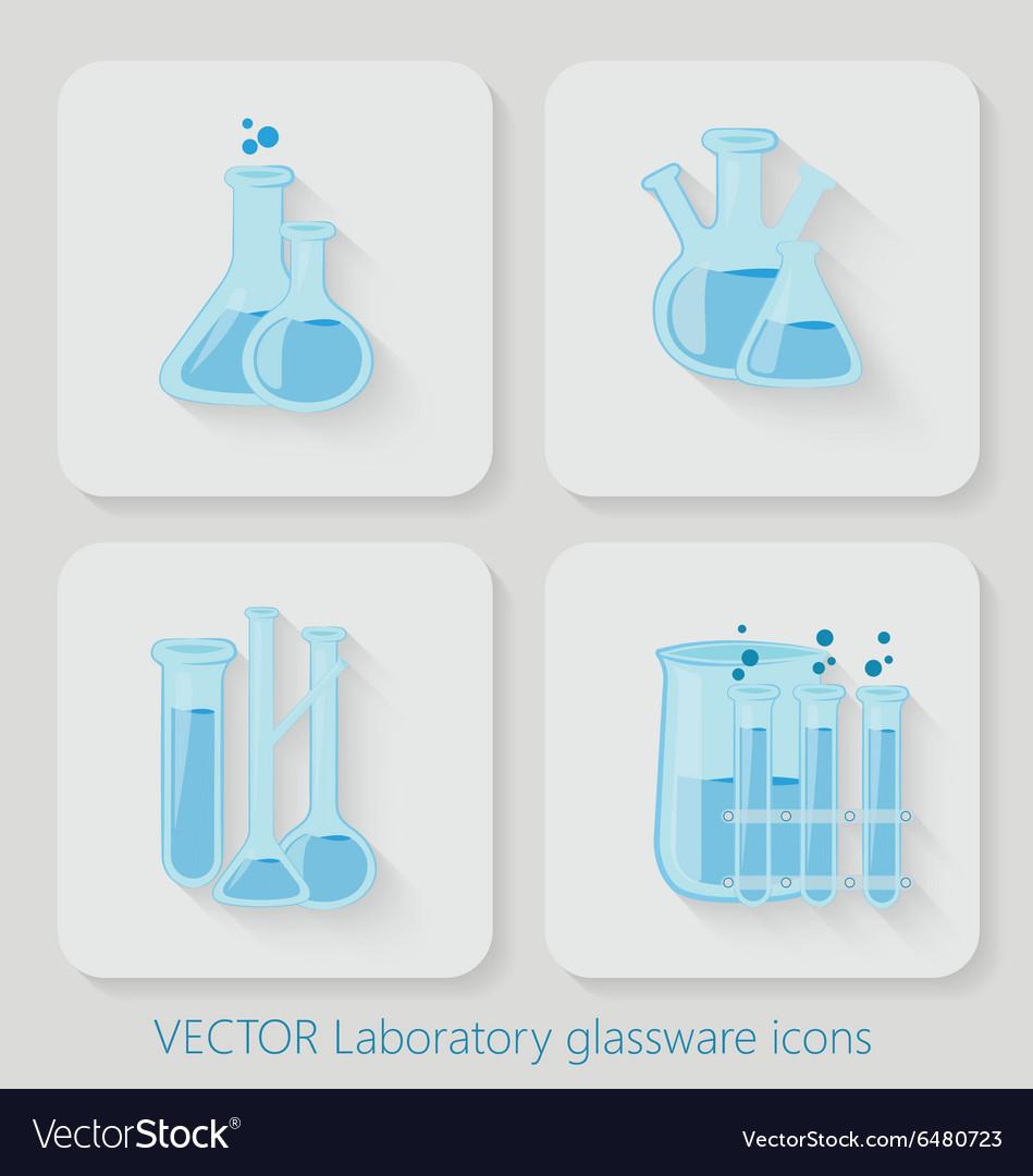 Laboratory chemical bottles glassware vector image
