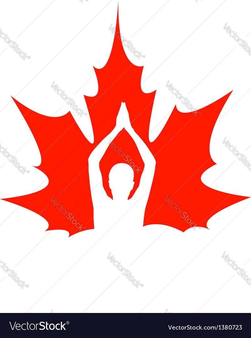 Red maple leaf logo vector image