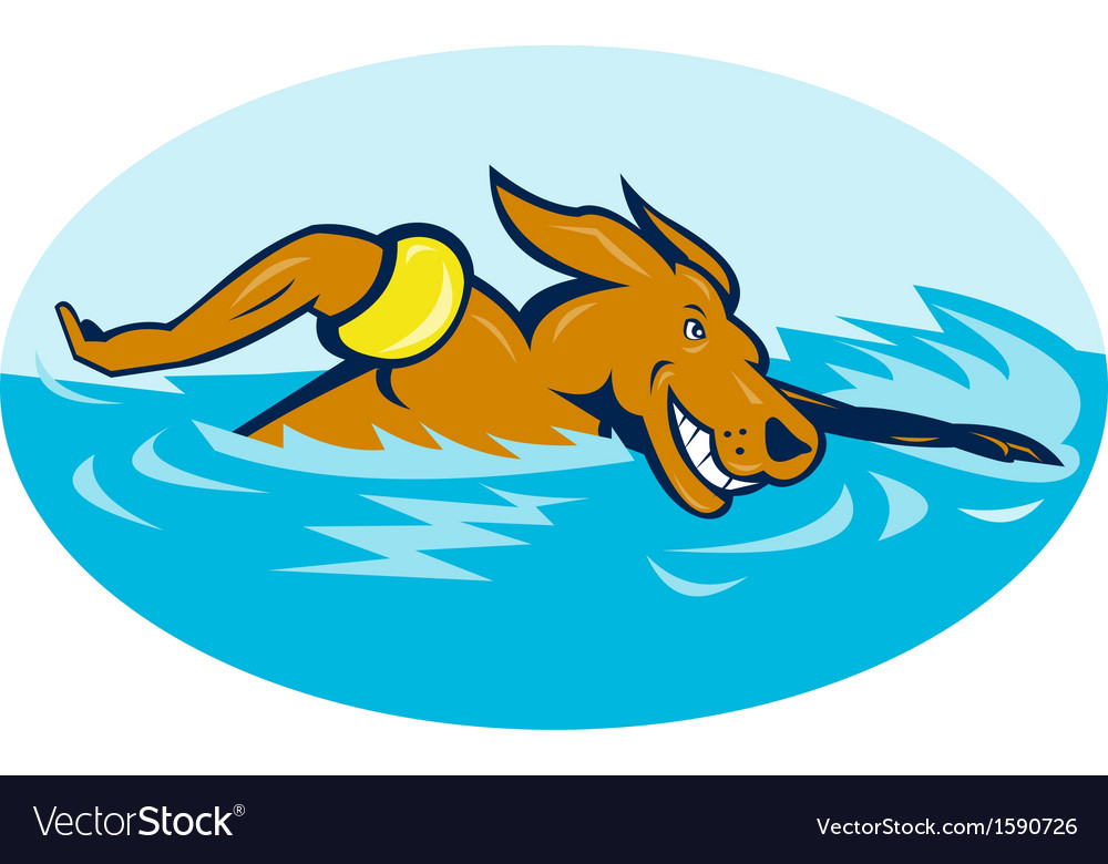 Cartoon dog swimming vector image