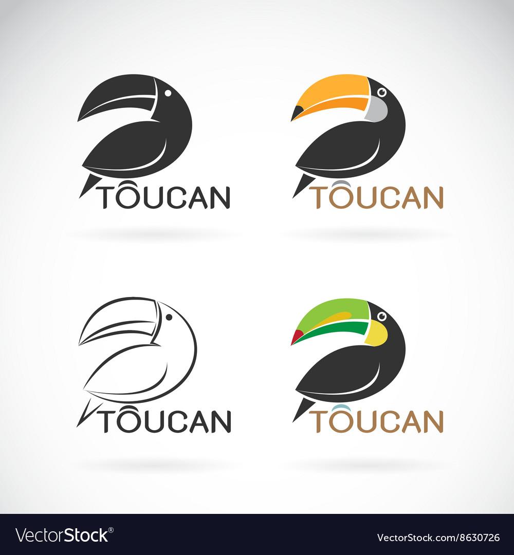 Image of an toucan bird design vector image