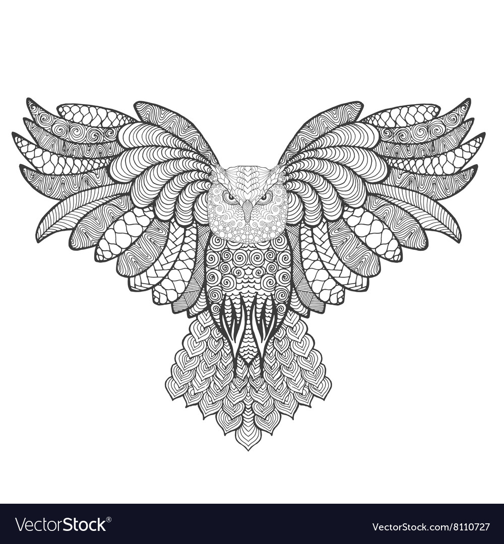eagle owl antistress coloring page vector image