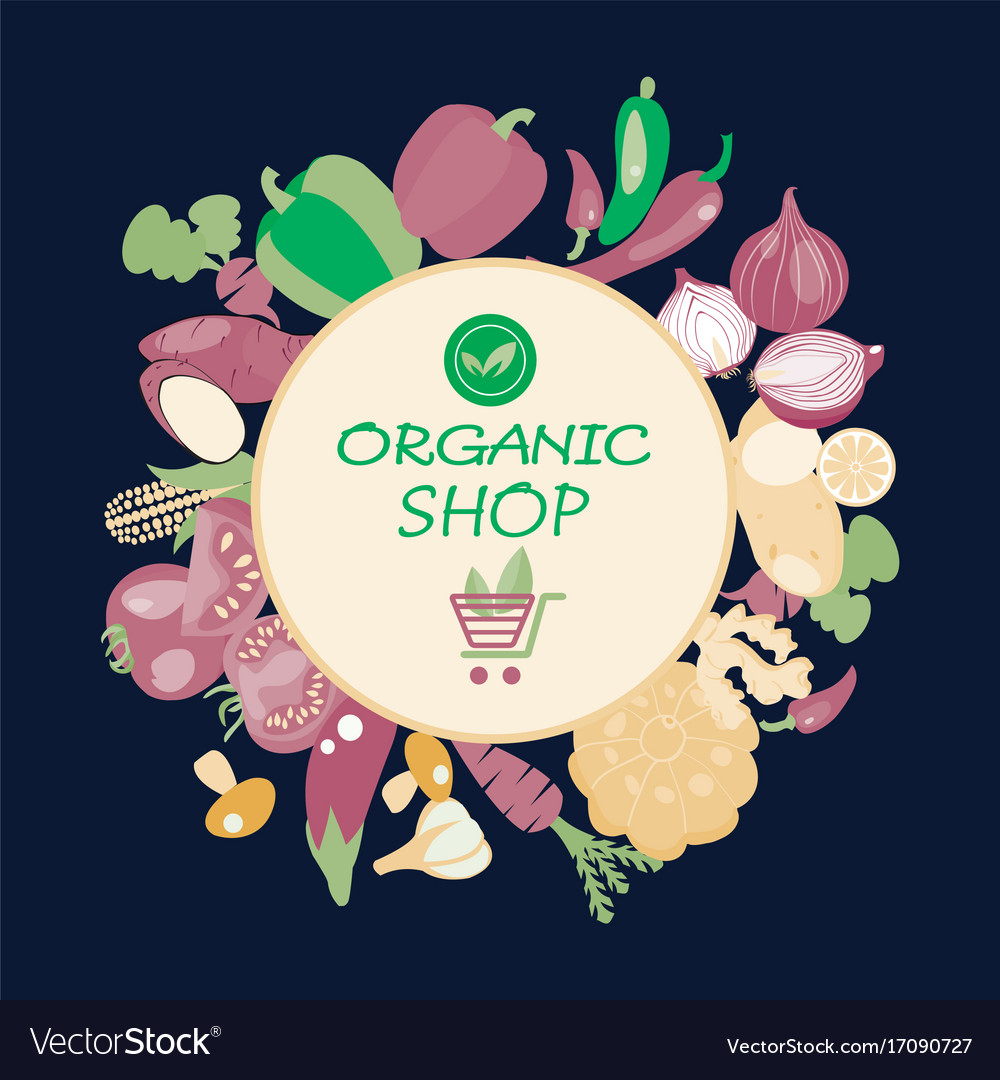 Eco healthy organic vegetarian food background vector image