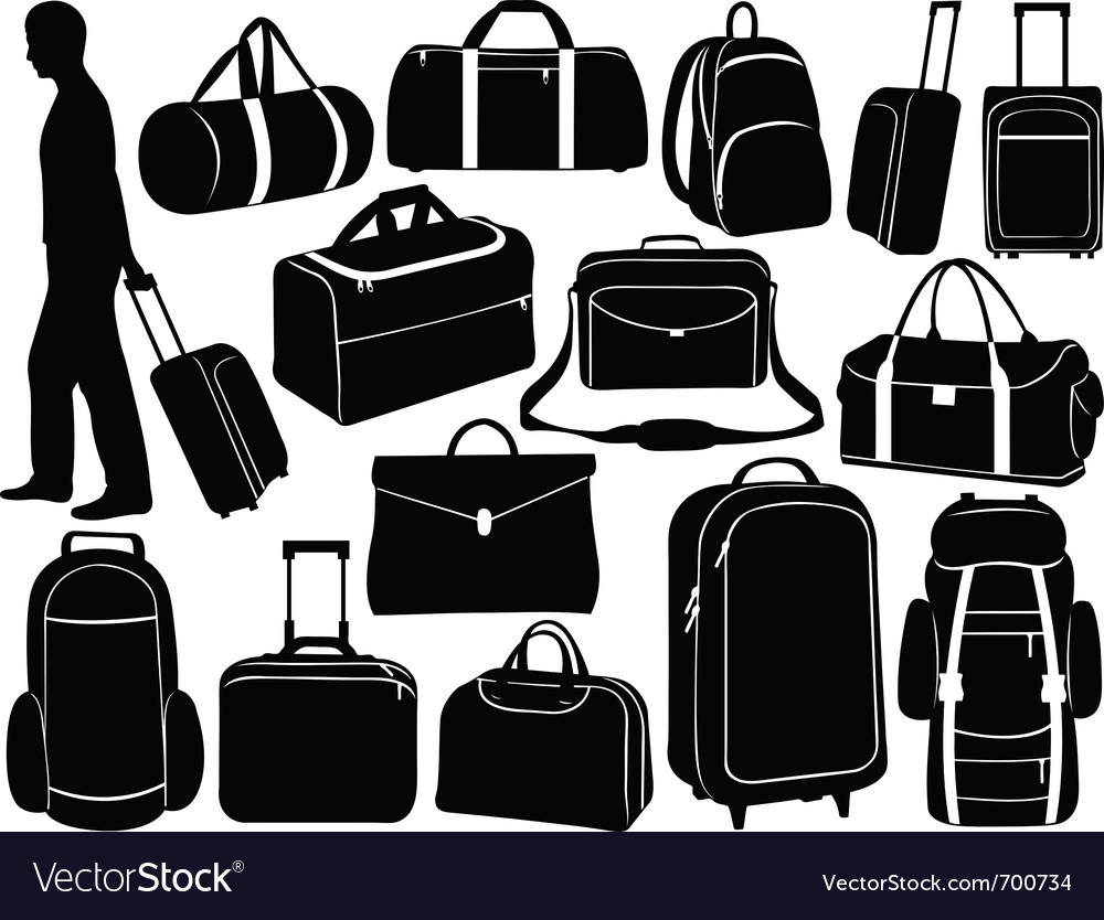 Different bags set vector image