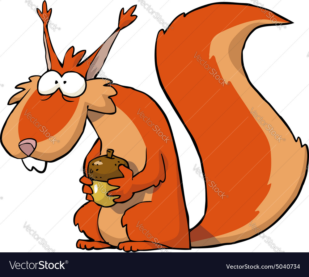Squirrel with acorns vector image