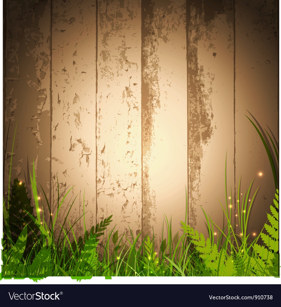 Grass over wooden background vector image