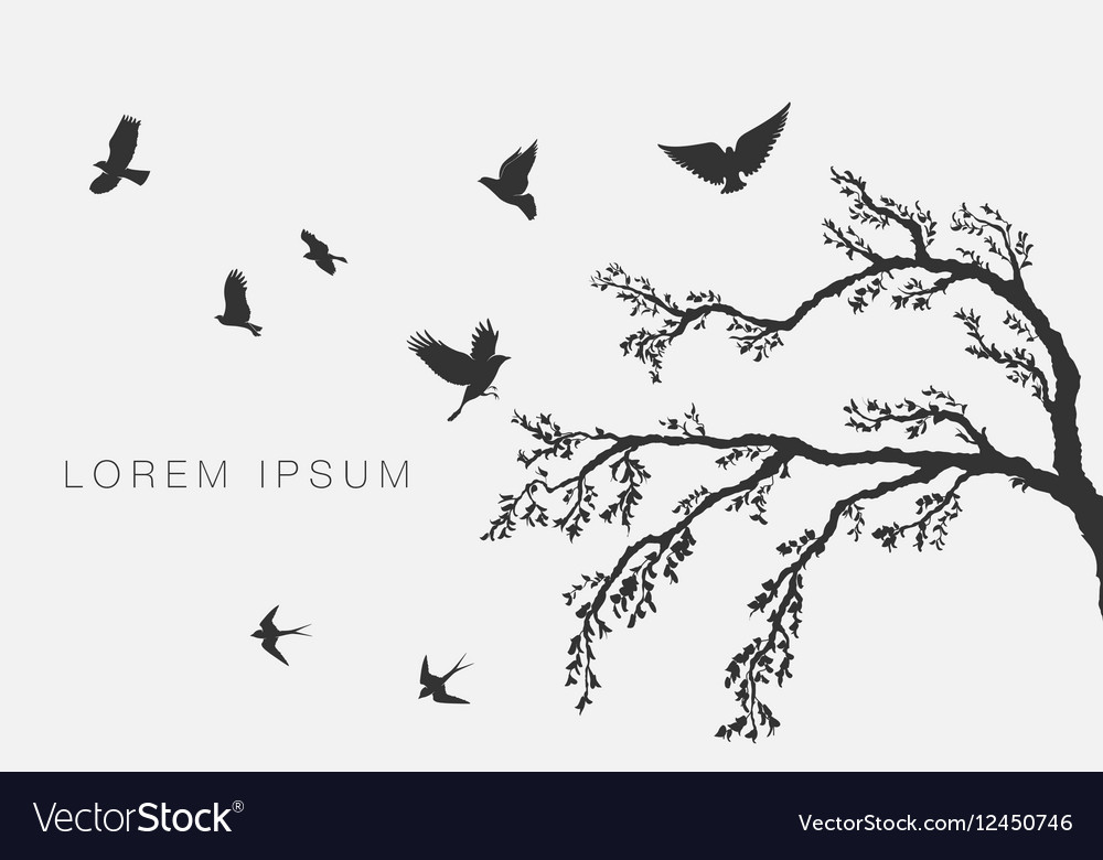Flying birds on tree branch vector image