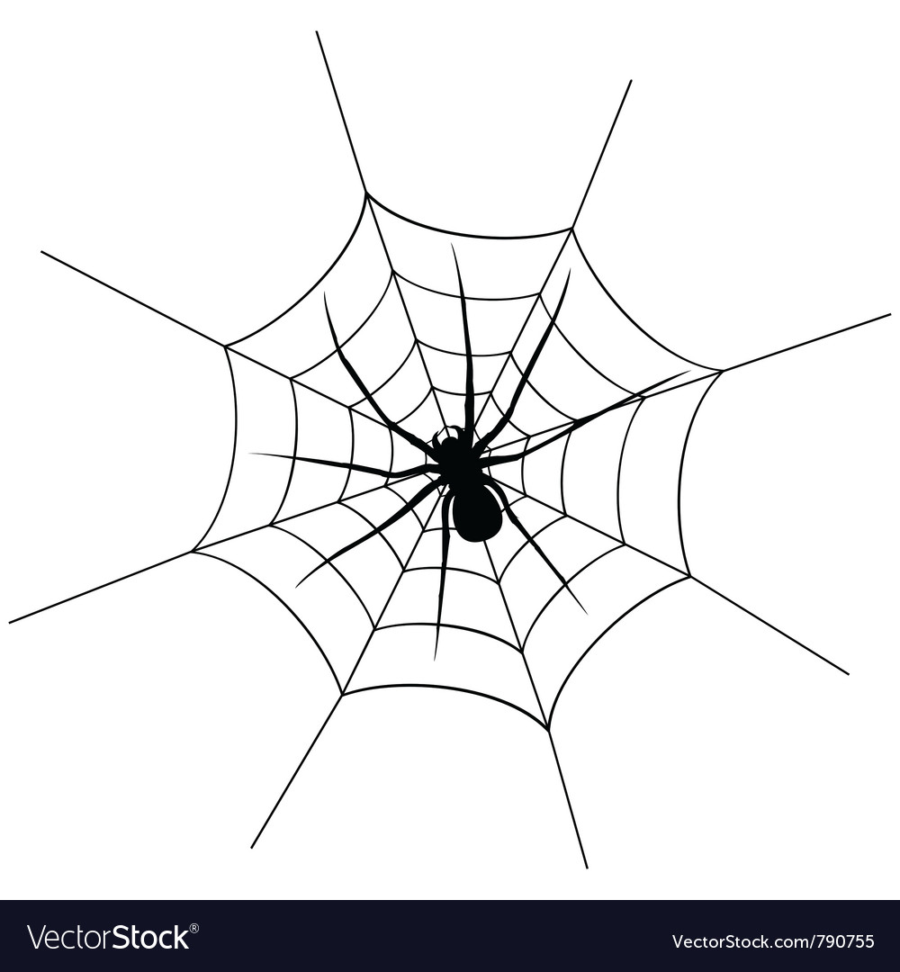 Spider weighs vector image