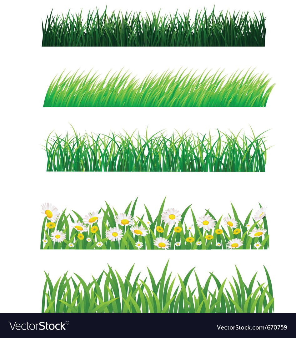 Grass collection vector image